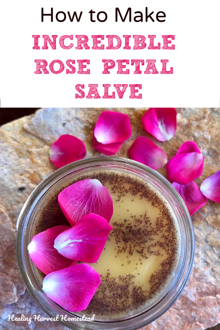 Oh….roses! Doesn't everyone love them? Here is a great gift you can make easily for a friend (or for yourself): My easy and effective Rose Petal Salve: super skin soothing and sweet-smelling. This homemade salve is created with natural ingredients & essential oils for a real treat for your skin and nose. This recipe is easy, simple, and fast, too! #handmade #gift #diy #miy #salve #rose #moisturizing #holiday #soothing #homeremedy #natural #recipe #healingharvesthomestead