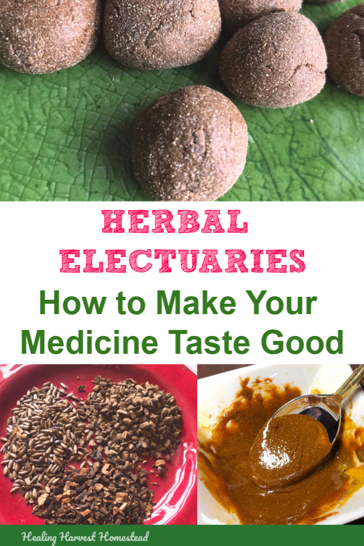 Hate to take your herbal medicine? Think herbal teas taste bad? Well, here is an herbal preparation called an electuary that will make you love your medicine. Find out what an electuary is, how to make one, and a great recipe for Liver Support Balls—a candy for your health. #healthy #homeremedy #tastegood #herbalism #plantmedicine #herbal #candy #healingharvesthomestead