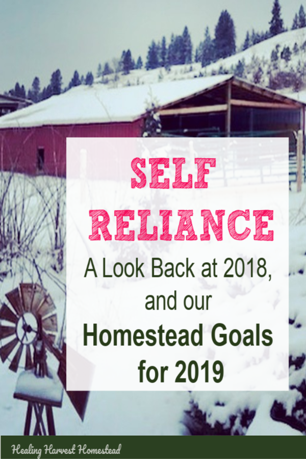 Self-Reliance: Relative independence from commercialism and materialism. The ability to DIY and take care of yourself. You can be more self-sufficient and prepared to survive! Even if you live in a city, you can improve on how much you rely on modern systems and stores. Here's a look back at Healing Harvest Homestead's accomplishments in 2018, and our goals for 2019. Be self-reliant! #selfreliant #healingharvesthomestead #selfsufficient #prepared #survival
