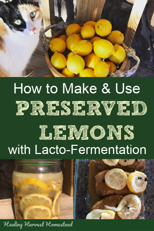 Fermentation is my favorite way to preserve most fruits and vegetables for later use. It's SO much healthier than any other food preservation method, and generally, fermented foods taste absolutely delicious! Here is how to ferment lemons, along with two different recipes for flavor. You'll also find out how to use these in your cooking! #fermented #lemons #fermentation #howtomake #howtouse #healingharvesthomestead