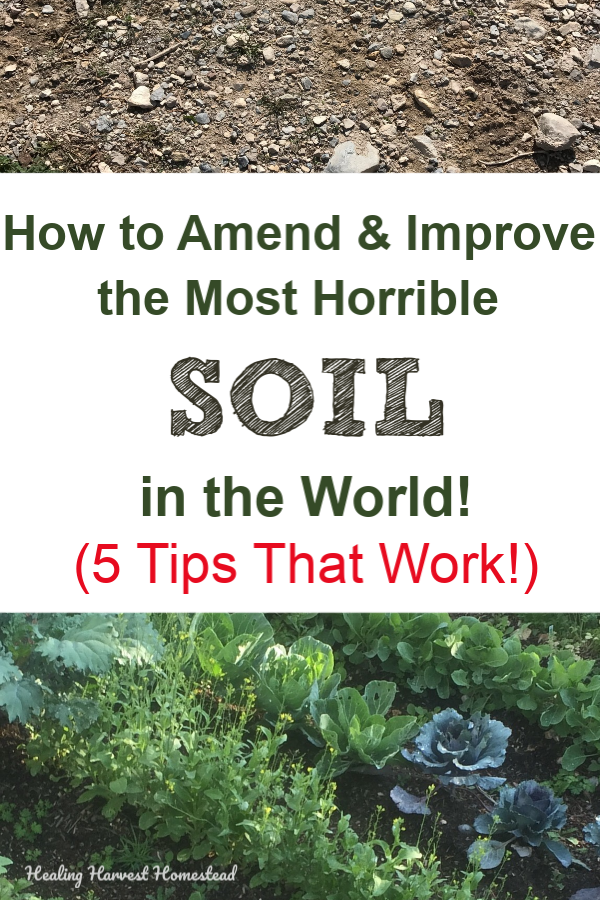 Find out how you can turn your poor soil into nutritious, useful, healthy, amended soil! Gardening is difficult in many areas, but with a little time and effort, you can create beautiful soil for growing your own food and flowers! Here is how to amend and improve your garden soil for your best garden ever! #gardening #amend #soil #fertile #howto #tips #improve #grow #healingharvesthomestead