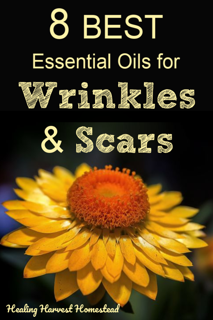 Everyone is concerned to an extent about the appearance of wrinkles or scars. Did you know there are essential oils that can help improve them? Here are the 8 best essential oils you can use for wrinkles & scars. These are stimulating, exfoliating, anti-aging, soothing essential oils. Find out how to use essential oils in your skincare regimen today! DIY! #essentialoils #best #wrinkles #scars #howtouse #diy #skincare #antiaging #healingharvesthomestead