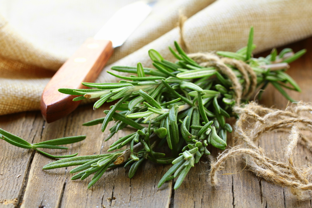 Rosemary can be used to rid your house of negative energy and was often used in smudging! It's said to have protective energies.