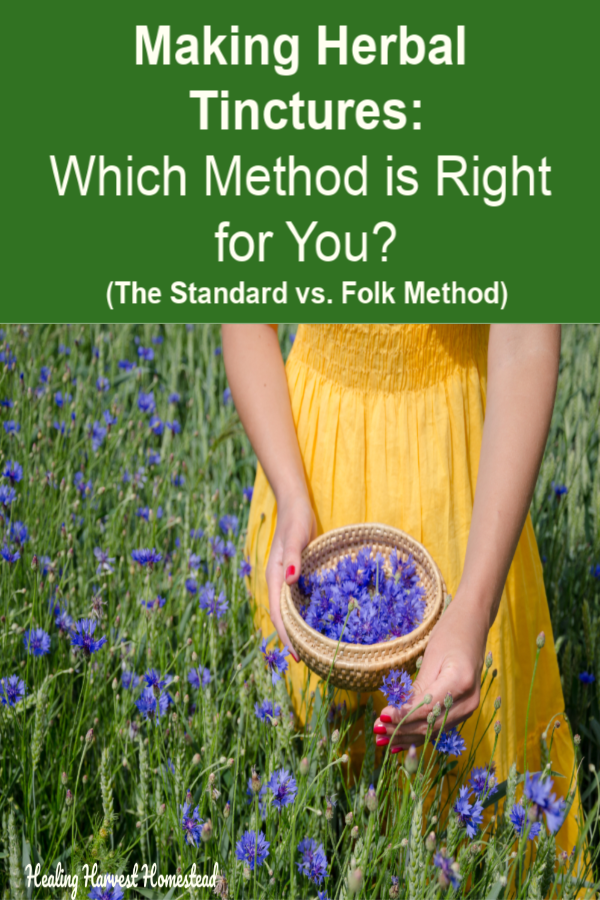 Ready to make your own plant medicine and home remedies using herbs? Find out which method is the best for making herbal tinctures or extracts? The traditional folk method or the more scientific standard method? You'll find out the benefits and downsides of both styles, plus my opinion. #homeremedy #tincturemaking #herbal #herb #plantmedicine #naturalhealth #folk #traditional #method #tintures #howtomake