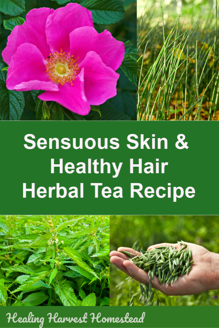 Your skin and hair are indicators of your health! This herbal tea contains tons of minerals and vitamins to support your health. The minerals involved specifically target your hair, skin, and nails. Want true natural beauty? Drink this tea daily. It's an easy tea blend recipe you can make at home and enjoy…because it's also delicious! #health #natural #skin #beautiful #hair #healthy #herbaltea #herbtea #homeremedy #tea #healingharvesthomestead