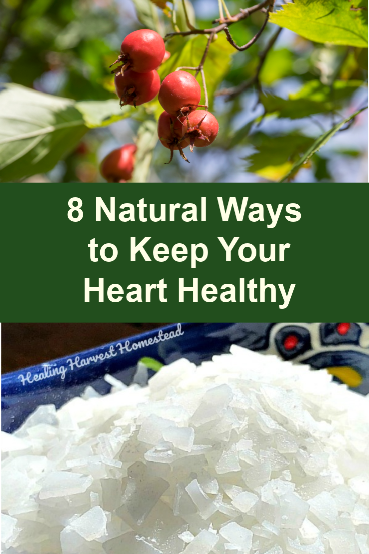 Having a healthy heart and circulatory system is vital for your activity levels, especially as you age. It's never too early to start taking care of your heart! Here are some natural ways to keep your heart healthy and support your wonderful heart muscle. #healthy #heart #natural #lifestyle #healingharvesthomestead