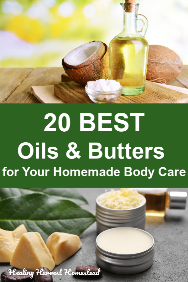 What are the best oils and butters to use in your homemade natural skincare products like salves, body butters, and balms? There are some big differences between them, and you'll want to choose the best ones for what you need before following a recipe for an herbal salve, body butter, or ointment. Here are the top 20 oils and butters to consider. #bodybutter #natural #salve #skincare #diy #homemade #best #oils #butters #carrieroil #recipe #touse #healingharvesthomestead