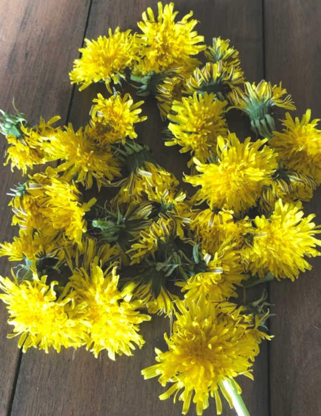 Pic Dandelions on Table.jpg