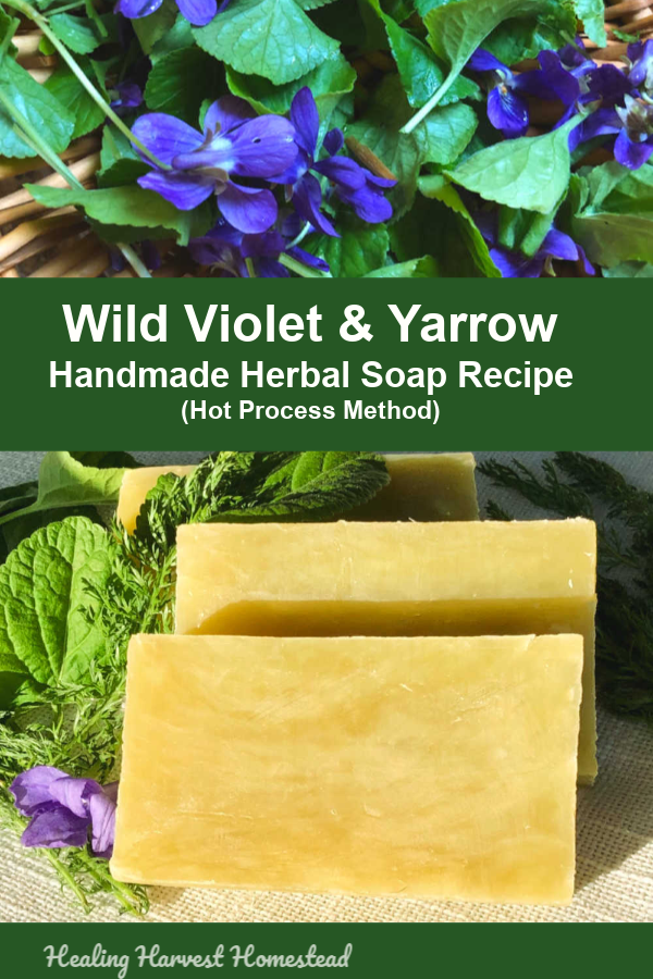 This wild violet and yarrow herbal handmade natural soap recipe is divine. There's just no other word. It's a beautiful light lime green color due to the herbs used, and it smells delicious. This hot process soap making recipe is perfect for your spring soaping days! #healingharvesthomestead #violet #yarrow #herbal #handmade #soap #hotprocess #howtomake #soaprecipe #naturalsoap #herbalsoap