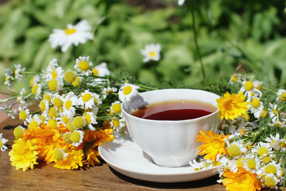 Nothing beats a cup of nutritive tea!