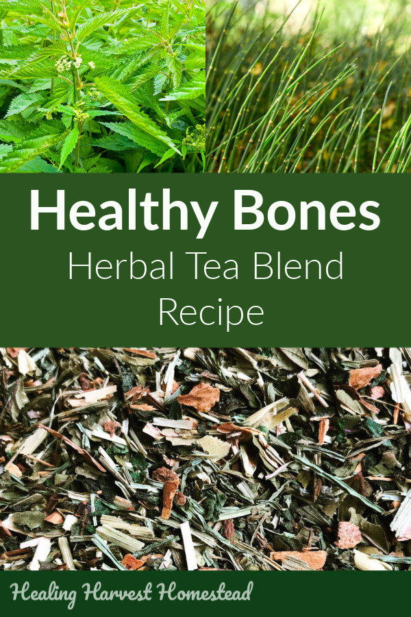 Growing paints? Weak bones? Osteoporosis? Brittle bones? Make this healthy herbal tea recipe blend to support the health of your bones and make them stronger. It's easy and simple to make, and by drinking it daily, your bones, skin, fingernails, and hair will be healthy, strong, and beautiful. Especially for female and teenage bone ailments. #herbaltea #femaleailments #growingpains #teafor #healthy #bones #plantmedicine #healingharvesthomestead