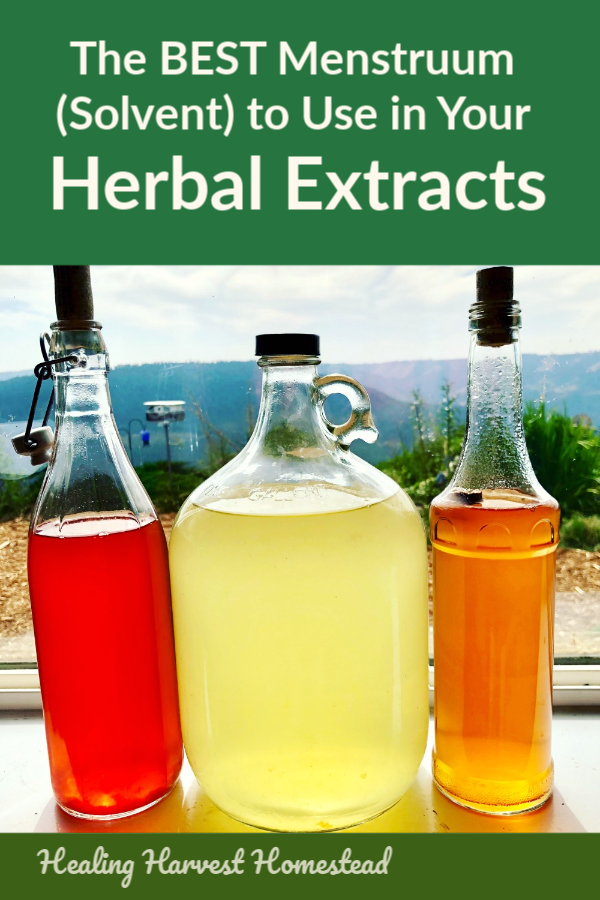 If you are an herbalist or make any of your own herbal extracts at home, you've probably wondered which is the best solvent, or liquid base, to use? Alcohol, vinegar, glycerine, water, and oil? Which to choose? Here is a guide to help you decide which menstruum is the best to use when making your home remedies. #homeremedy #naturalremedy #menstruum #solvent #herbalism #herbalextract #extract #healingharvesthomestead