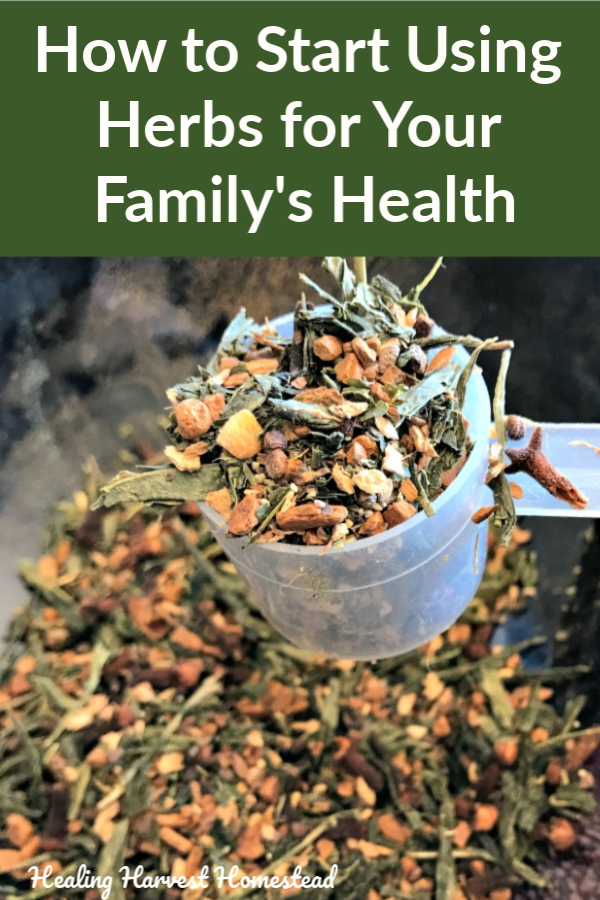 Start learning how to use herbs for your family's health and wellness! Starting with FREE, here are many choices for you, and I'm sure at least one will fit perfectly! Whether you enjoy reading, video, audio, hands-on, I have ideas for you! Find out how, now. #howtostartusingherbs #herbsforhealth #herbalism #learnherbs #plantmedicine #homeremedies #safe #effective #easy #fast #healingharvesthomestead