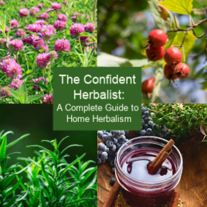 You can take a home herbalist course to get you up and going quickly in your knowledge of home remedies…OR you can join my monthly tribe, The Confident Herbal Tribe.  Click Here for more info.