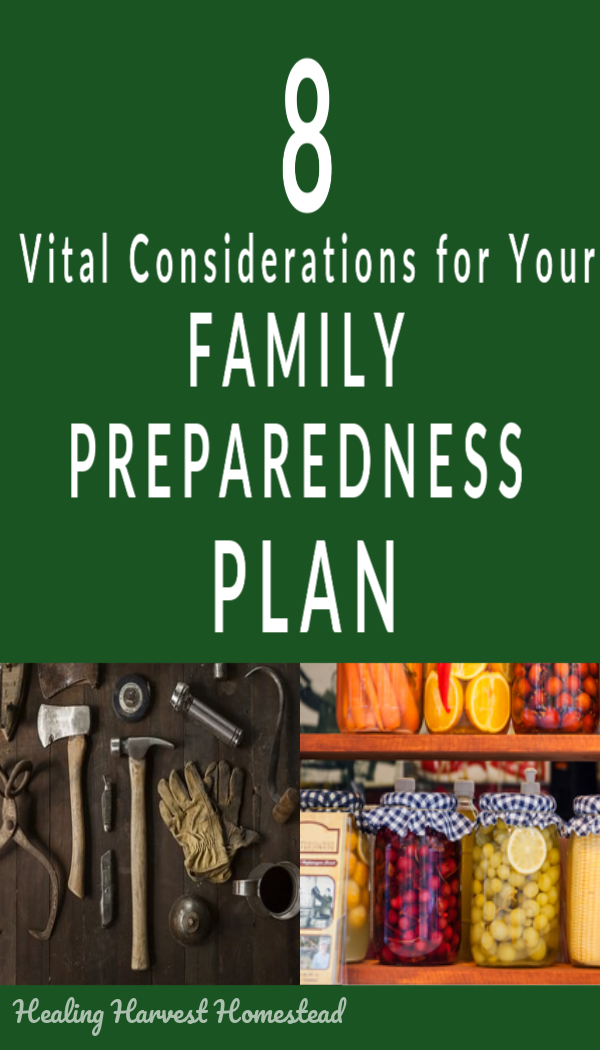Are you ready if the power goes out for days or even weeks? Could you survive a local natural disaster? Are you counting on government services that may not be there? Here are 8 things to consider as you get ready to survive a potential emergency disaster or calamity, whether it's widespread or local. Be ready! #survival #disaster #emergency #survive #stayalive #preparedness #howtoprepare #healingharvesthomestead