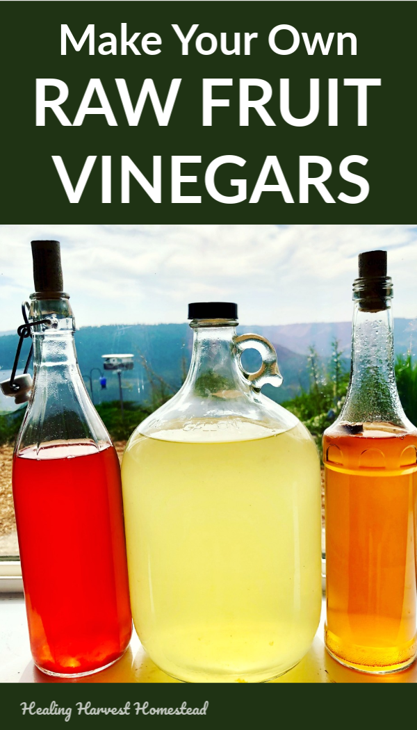 Do you buy expensive store-bought raw apple cider vinegar? Well, it's easy to save money and drink raw homemade vinegar that's even healthier for you than the store-bought! It's filled with natural probiotics, and the taste is amazing! Find out the benefits of raw vinegar, how to make your own at home with step by step instructions, along with a bit of the science of vinegars. #howtomake #homemadevinegar #rawvinegar #fromscratch #savemoney #healthy #benefits #uses #healingharvesthomestead