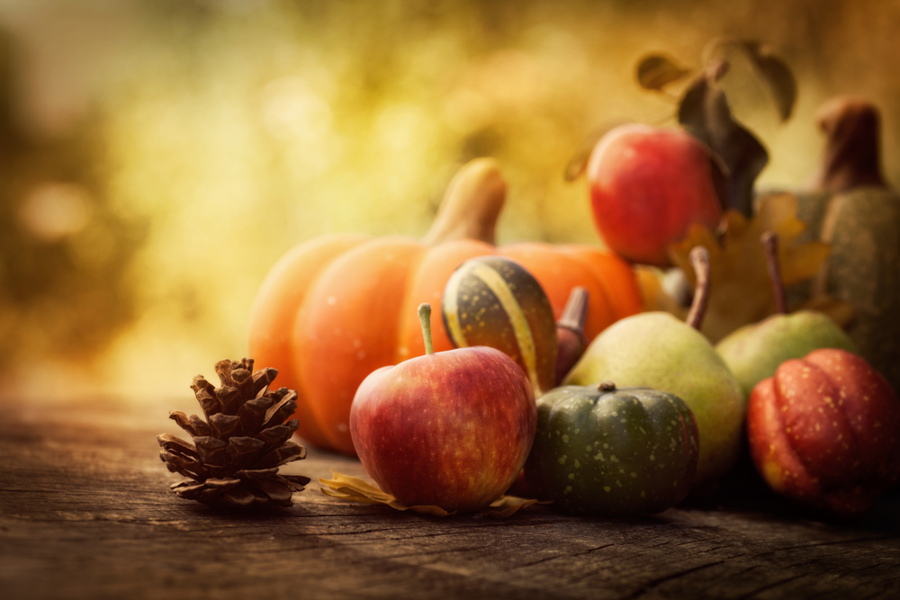 Fall fruits are incredible inspiration for the Fall season!