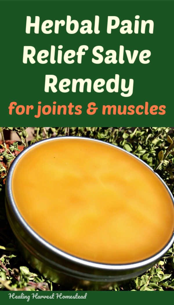 Find out how to make a natural herbal pain relief salve that really works! Follow these easy directions and you'll have a great herbal salve for general joint and muscle pain you can use yourself or give to friends in need. Find out how to make this herbal salve now! #herbal #salve #painrelief #pain #homeremedy #naturalremedy #healingharvesthomestead