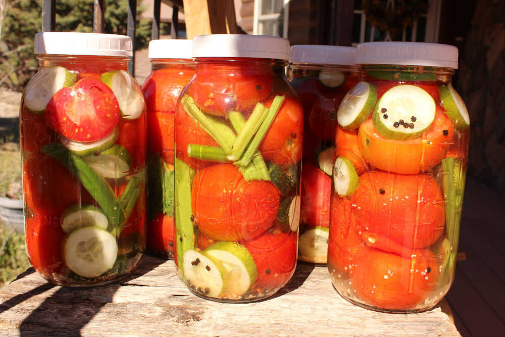 """Here are 5 half-gallon Mason jars ready to sit and ferment for a few days. I'm using plastic lids here. That's because they don't corrode from the brine, and they are easy to """"burp."""" Since there is no airlock on these, I will have to burp them by just loosening the lid once or twice a day to let the gases from the fermenting process escape.  I love doing this.  You get to see all the bubbles rise to the top and hear the pfffft! of the gases coming out! It's a great science experiment for kids, too."""
