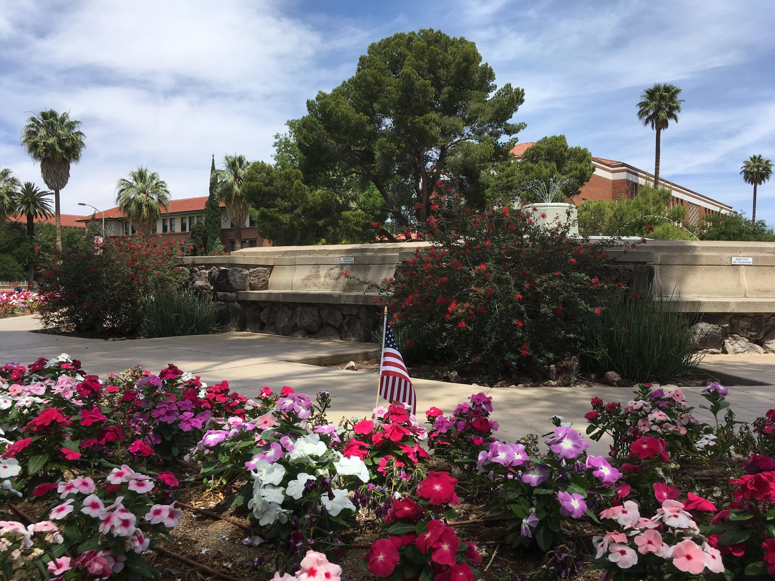 When I visited the memorial fountain at Old Main today, I was pleased to see several small flags around the perimeter. I believe UA students who died in the war are also honored on a plaque in the basement rotunda of the Student Union, but that space was locked today and I could not double check.