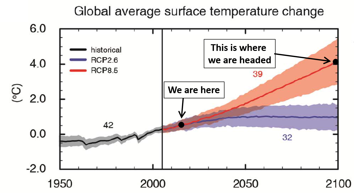 Image obtained from the IPCC AR5 at https://www.ipcc.ch/report/ar5/.