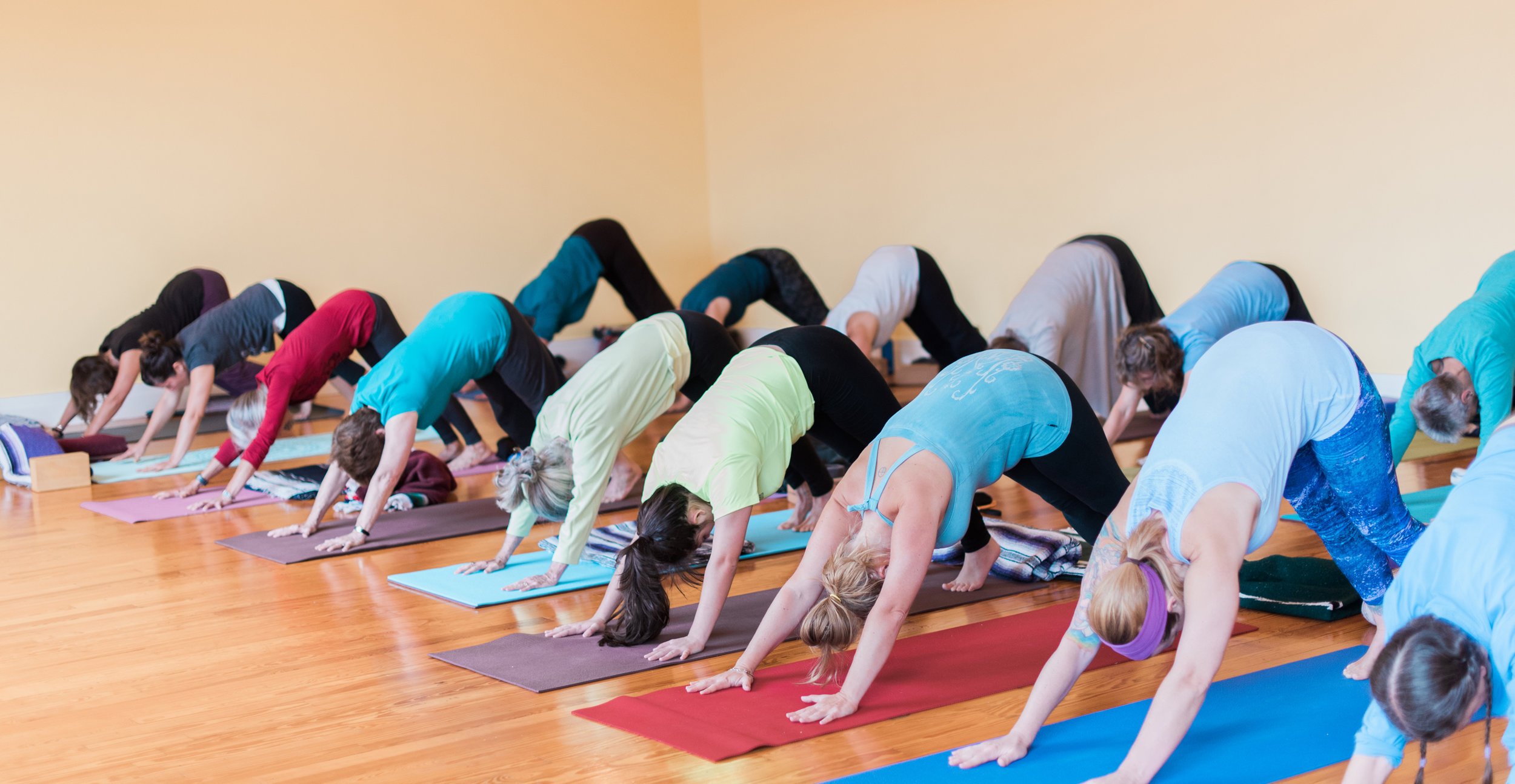 Yoga Sanctuary-0001x.jpg