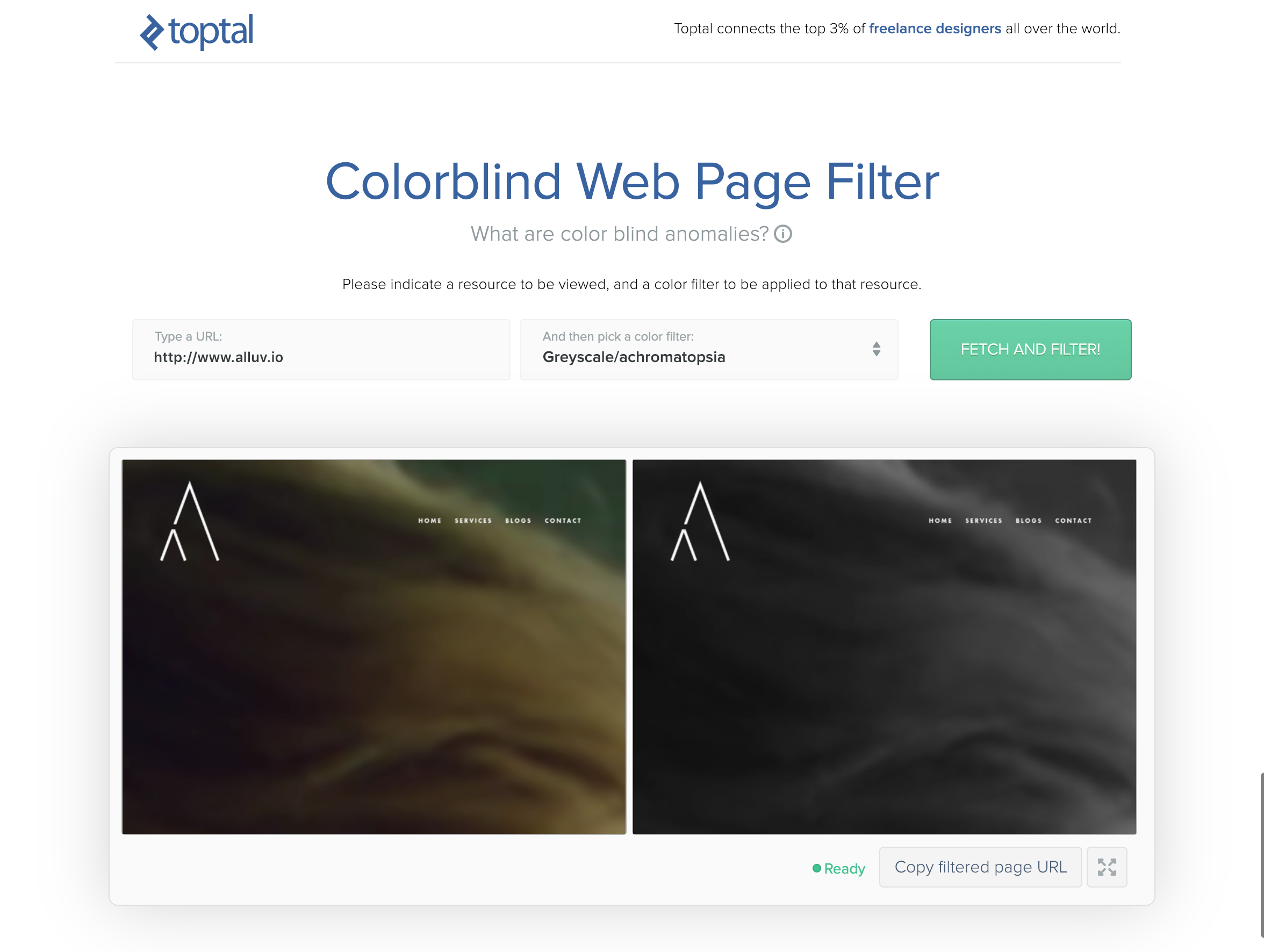 Toptal Color Blind Filter.png