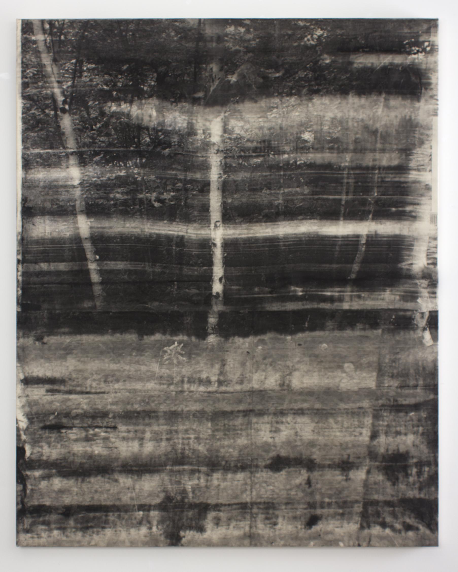 Landscape No. 7 , 2015 copy-machine toner on canvas 50 x 65 in
