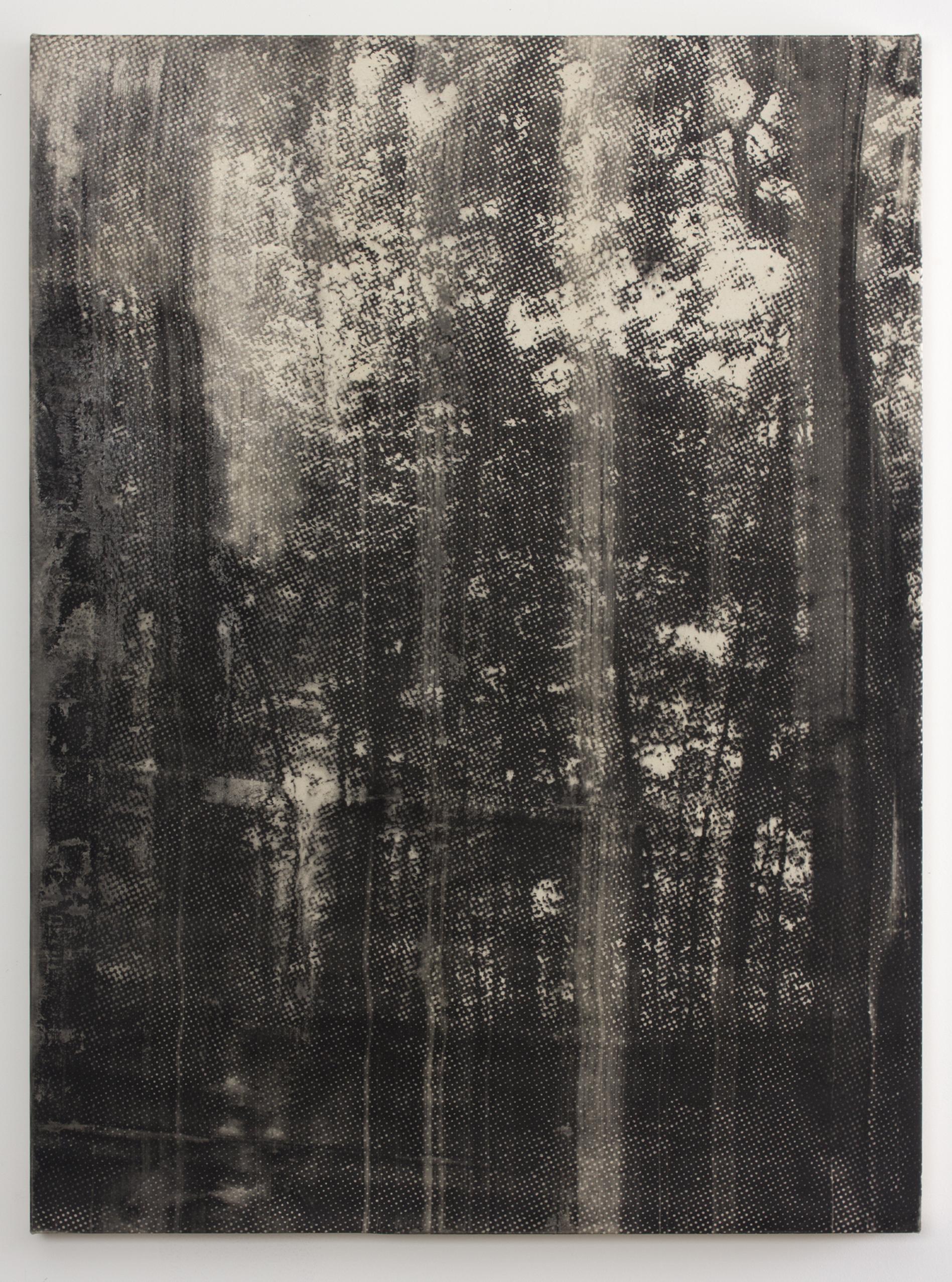 Landscape No. 8 , 2015 copy-machine toner on canvas 36 x 48 in