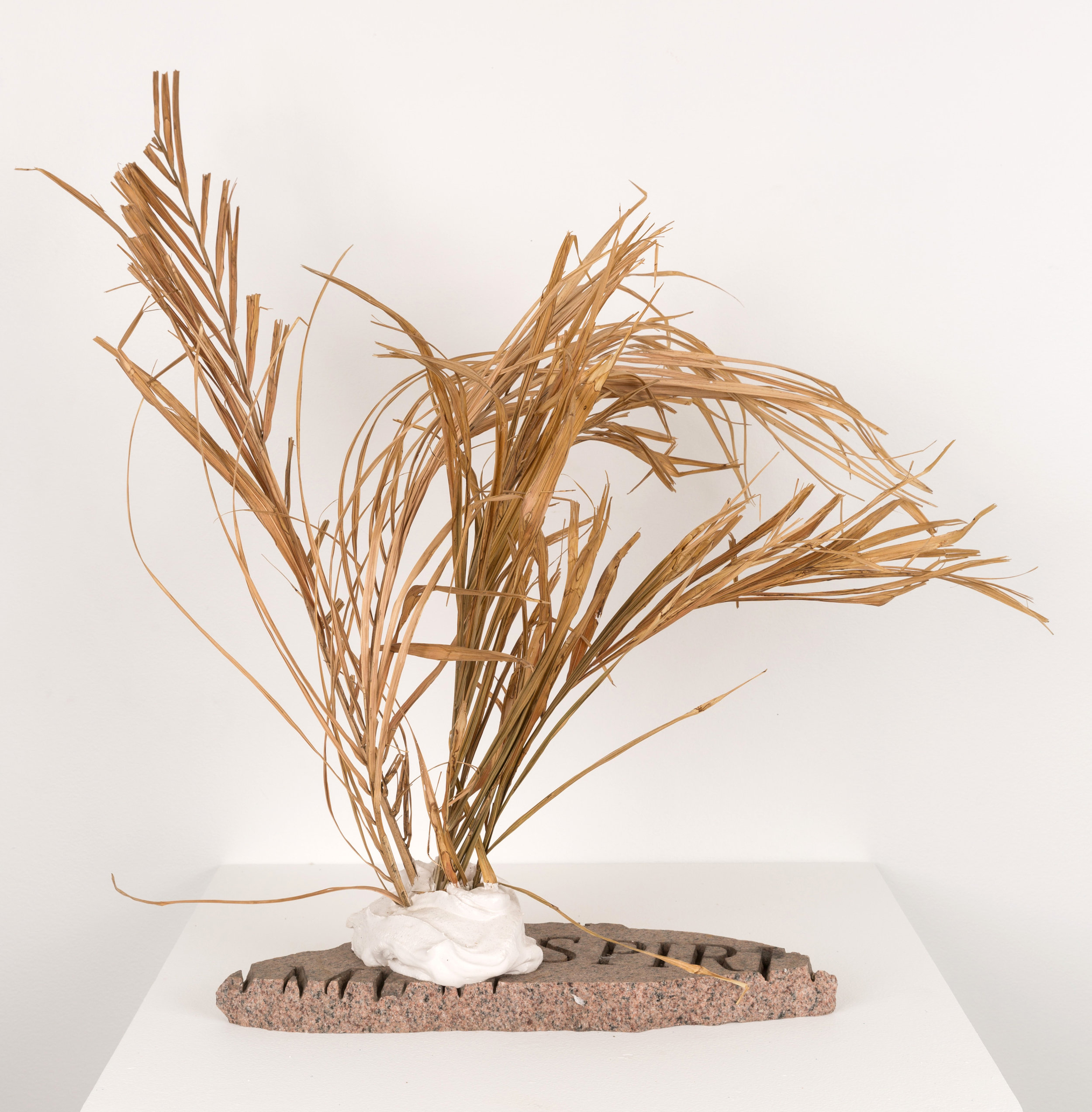 (offering) , 2018 etched granite, Hydrocal, palm frond 26 x 24 x 17 in