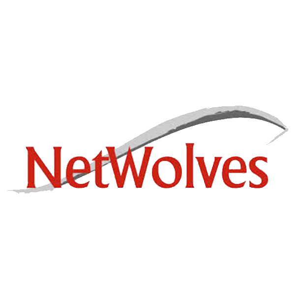 NetWolves logo no background.png