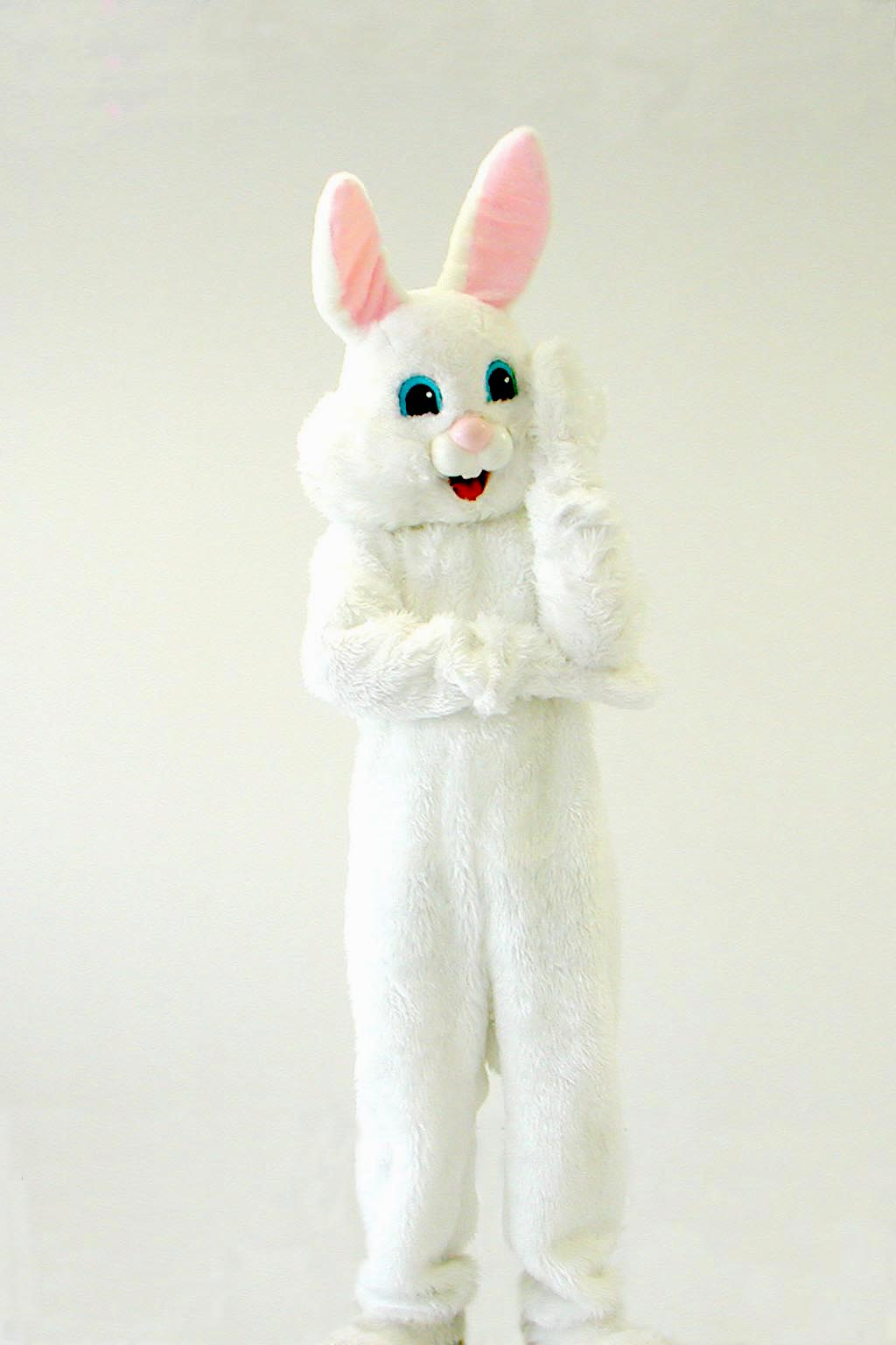 Bunny 24.jpg