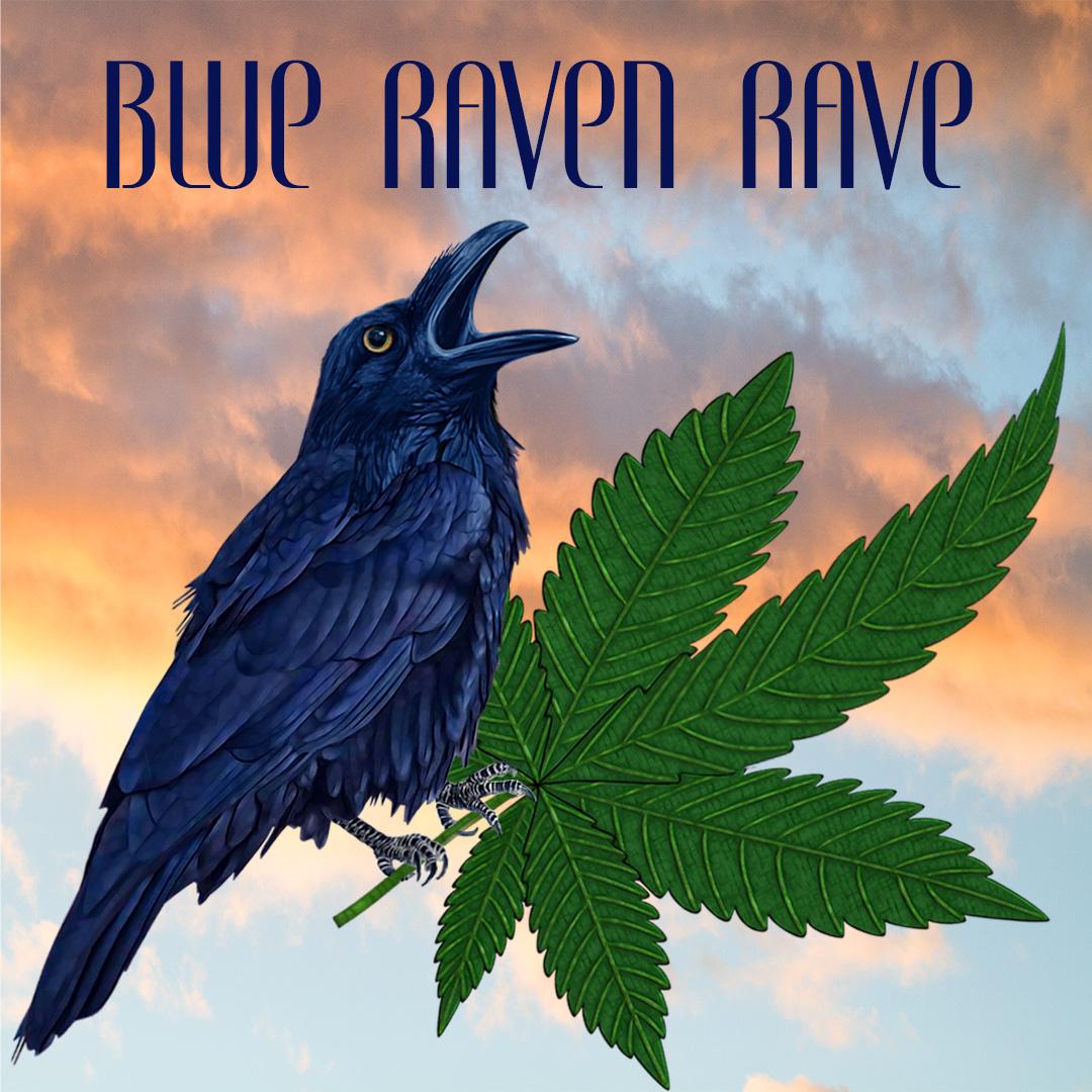 BLUE RAVEN RAVE 3