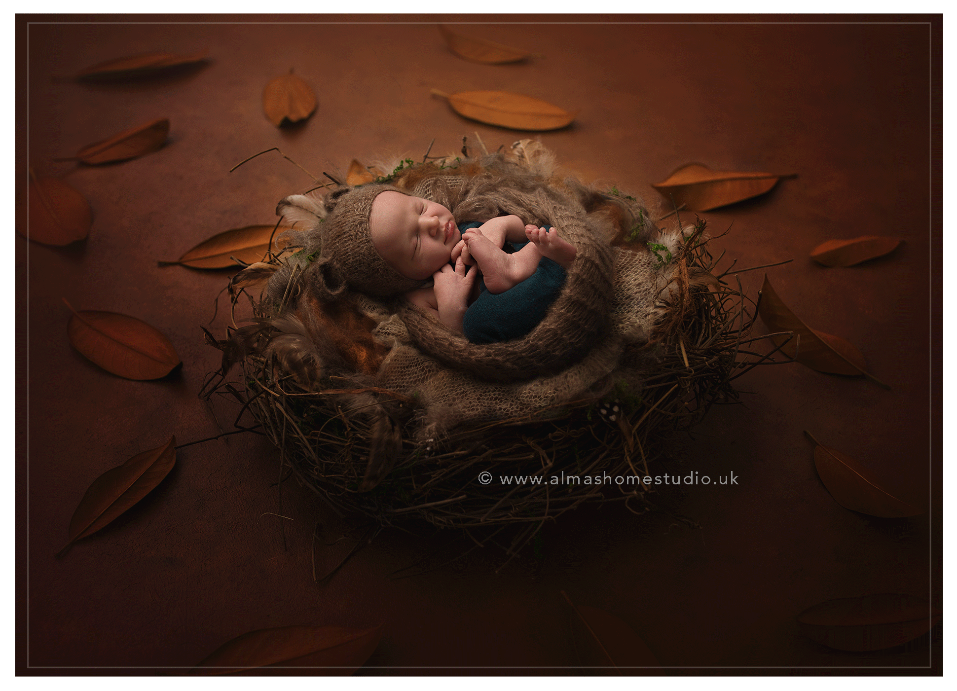 Newborn photographer near me Poole