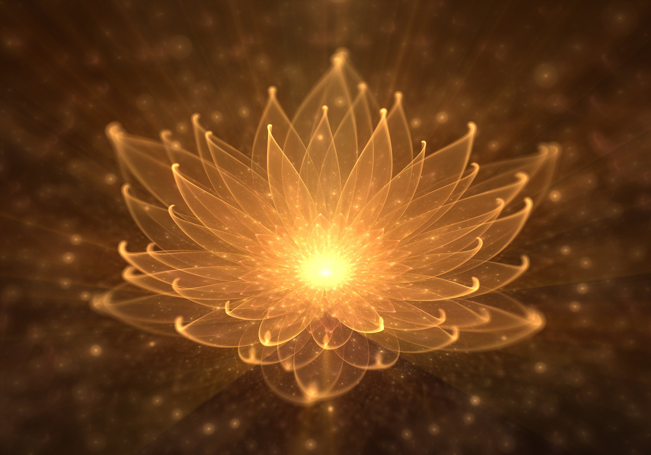 Flower of Light