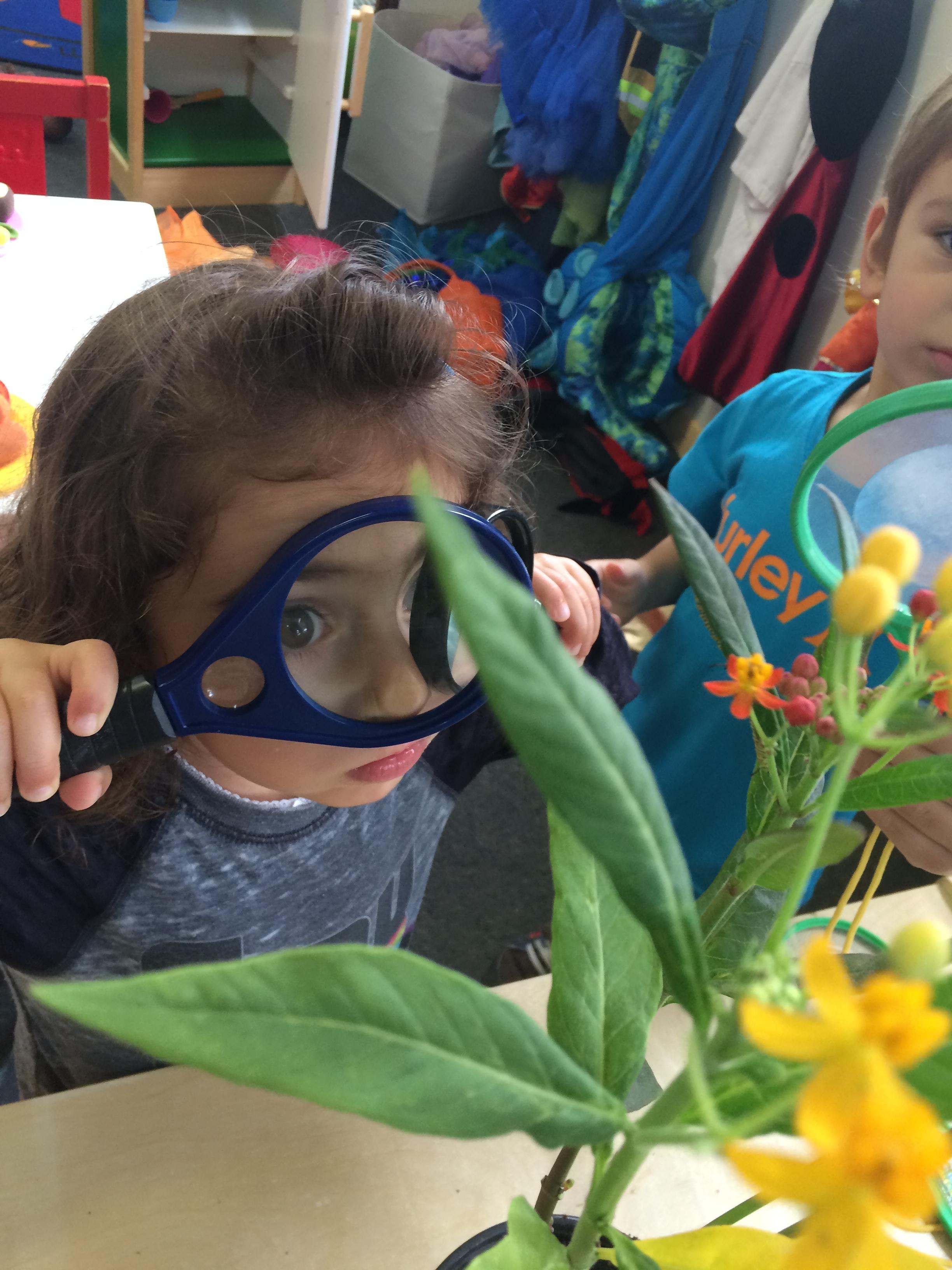 Play based preschool in San Francisco