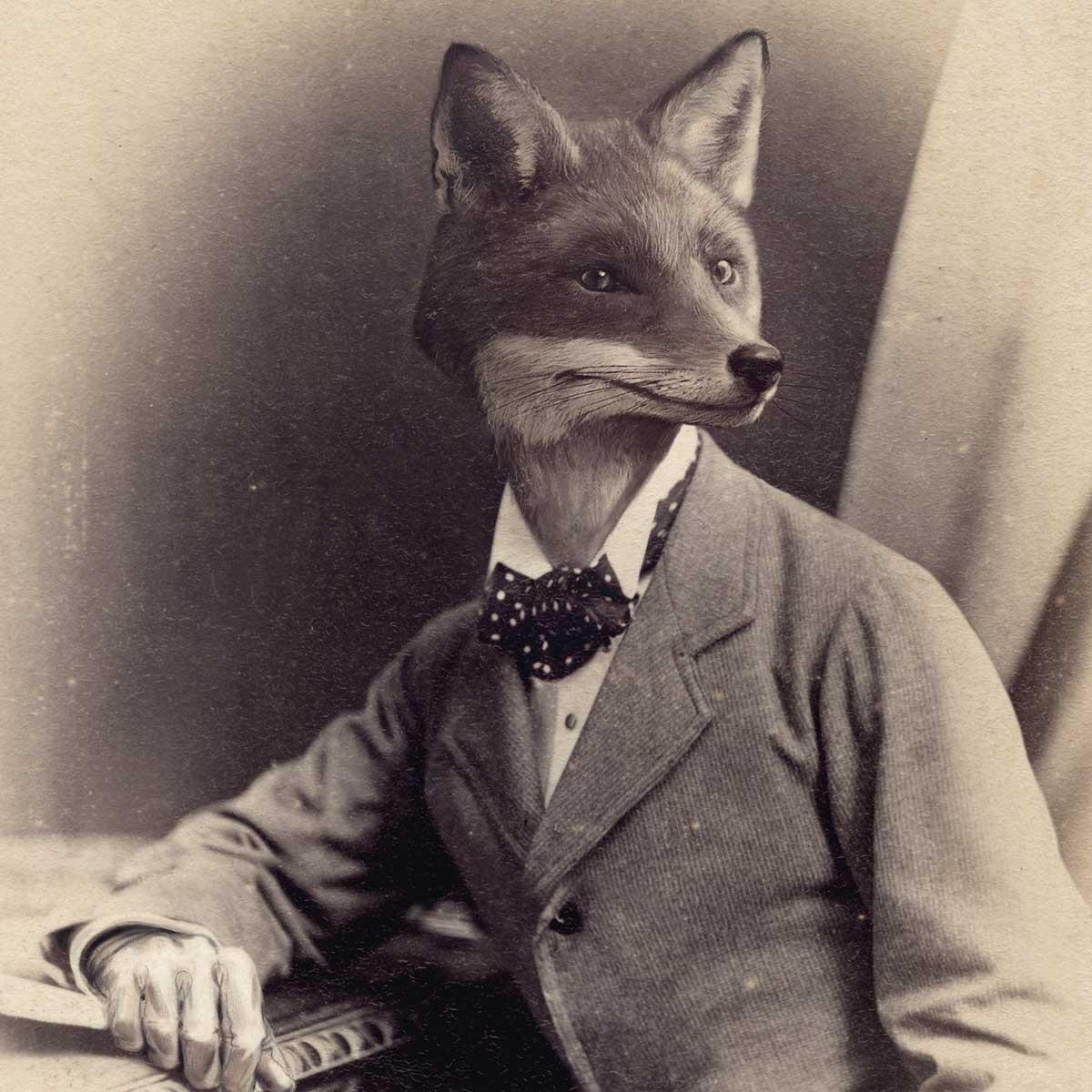 unlucky-fox-insta-CDV-03.jpg