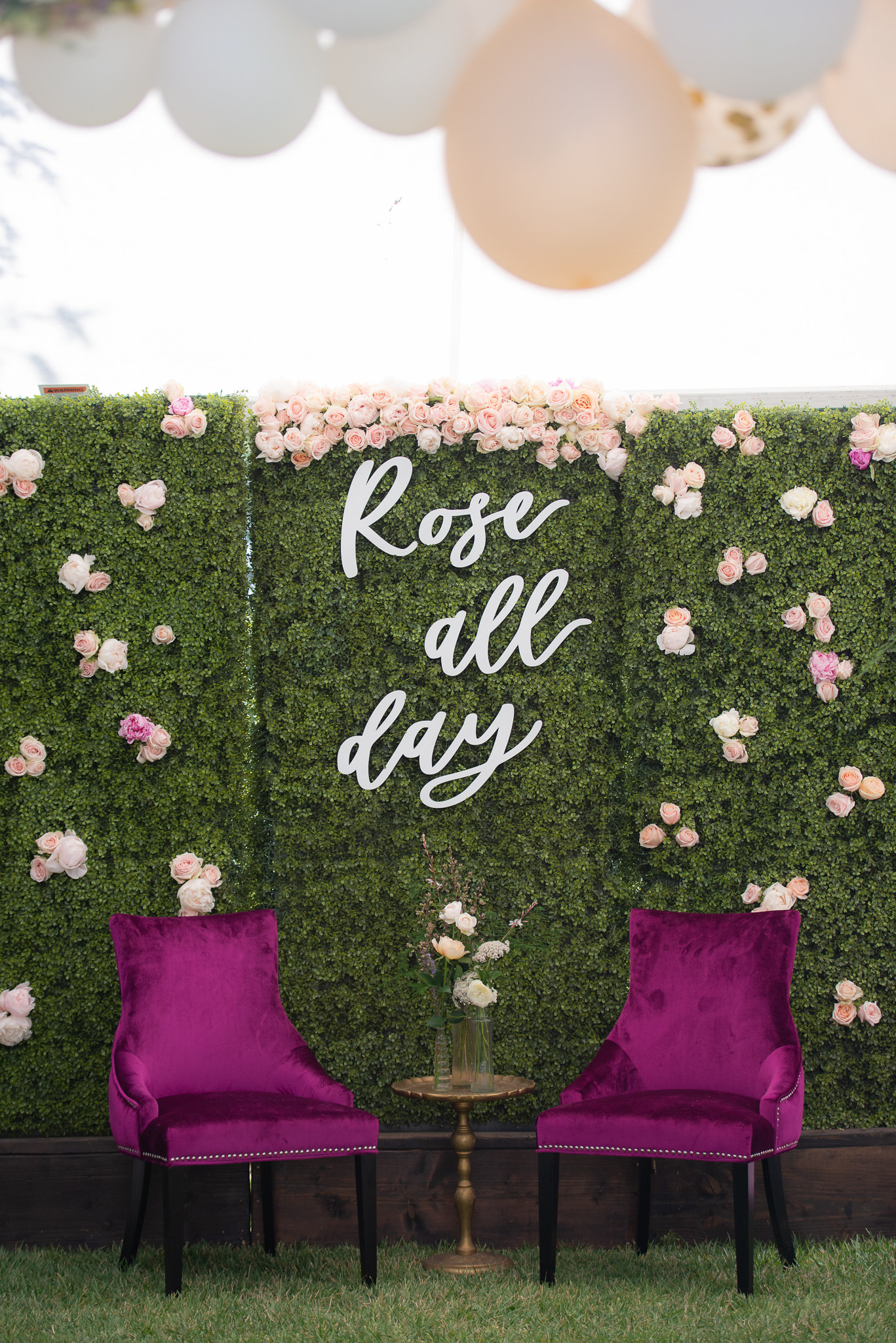 Rosé All Day Vignette