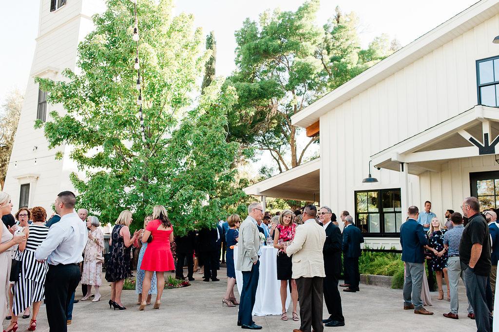 Park Winters Summer Wedding | Outdoor reception |  Wedding Cocktail Reception | Barn Wedding