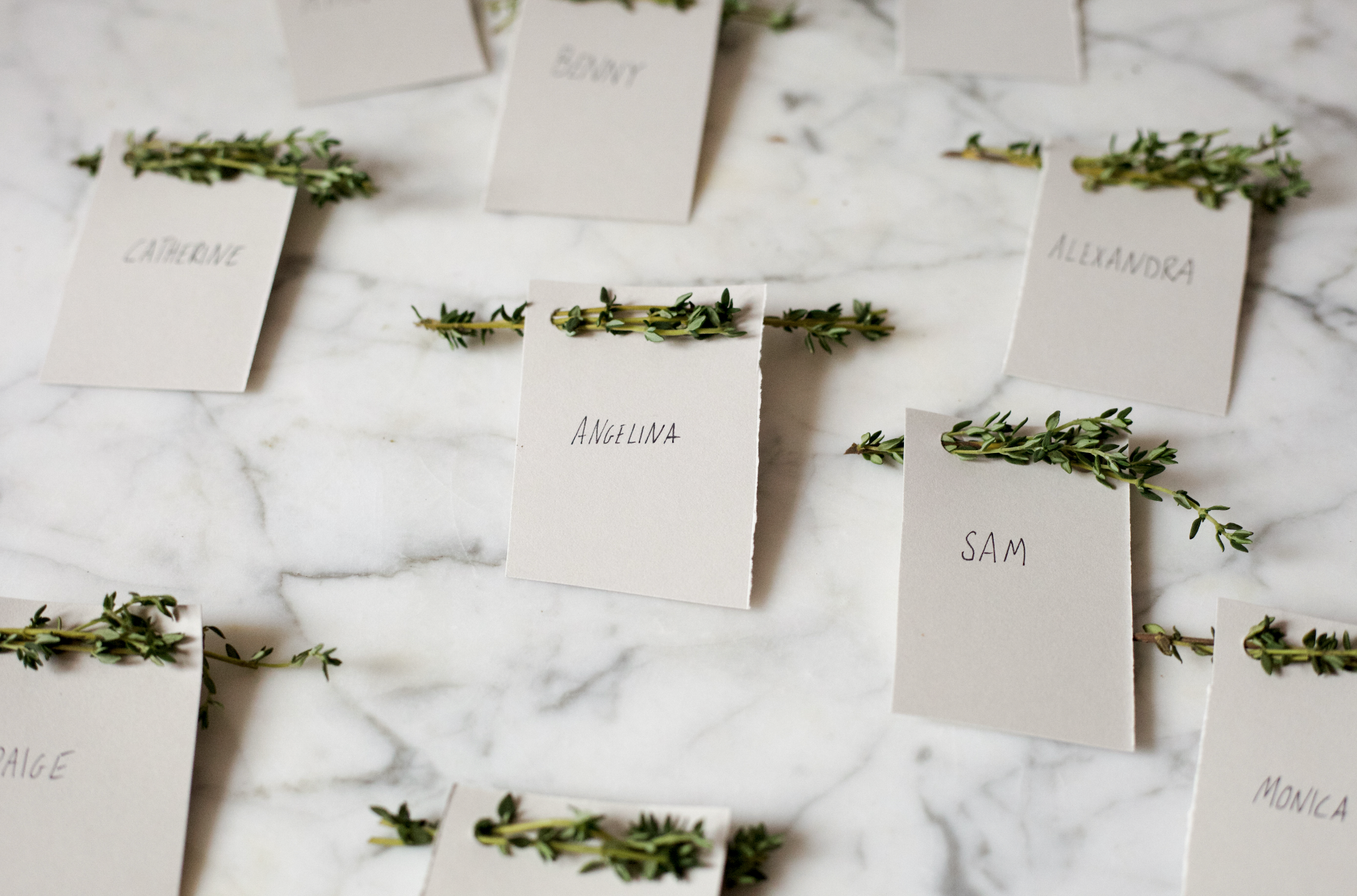 Place cards with herbs