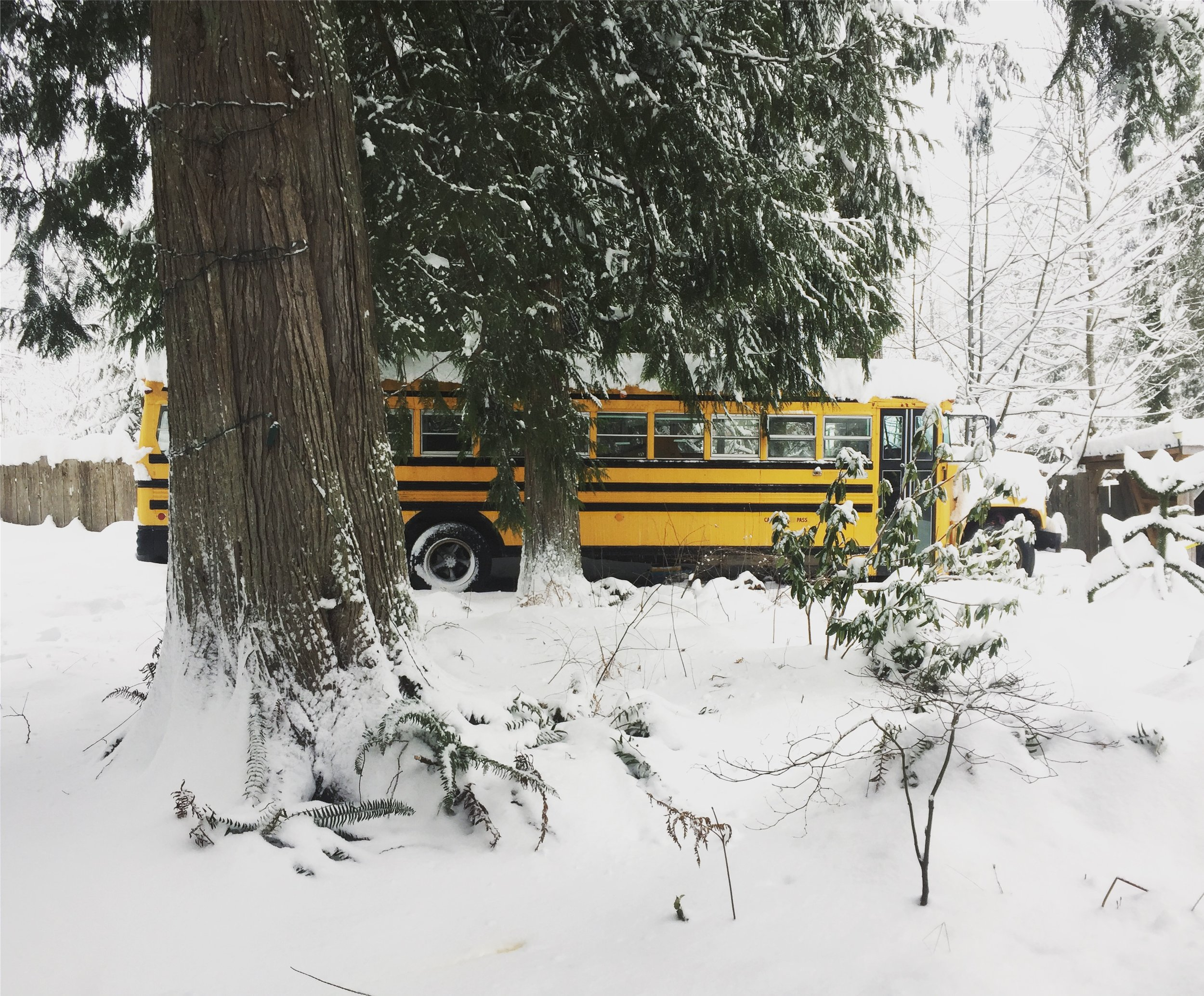 Tia Winter Photo - Bus - Tiny Life Supply (2).JPG