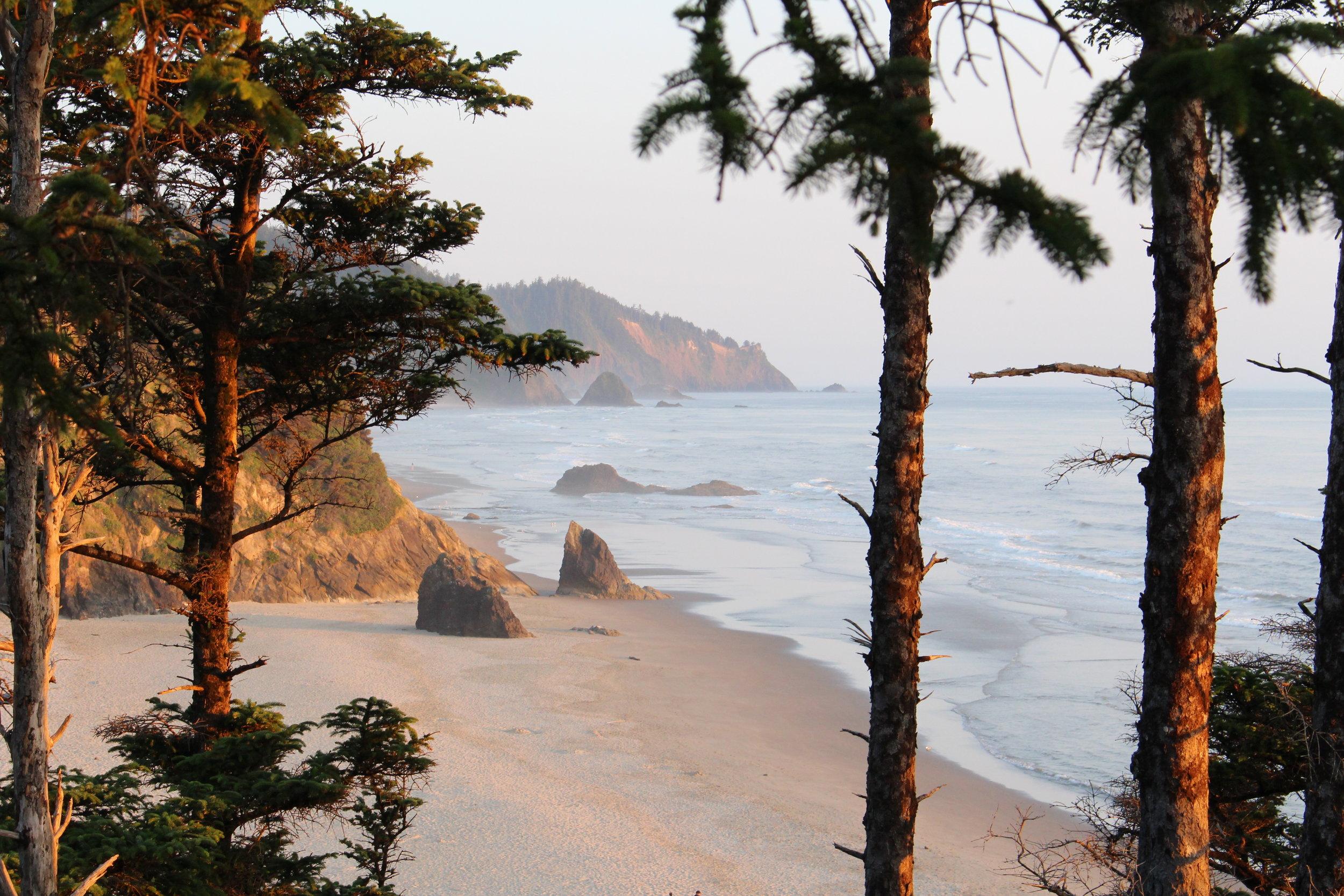 Where We Roam Brilliant Ocean Shot _ Bus Life _ Tiny Life Supply.JPG