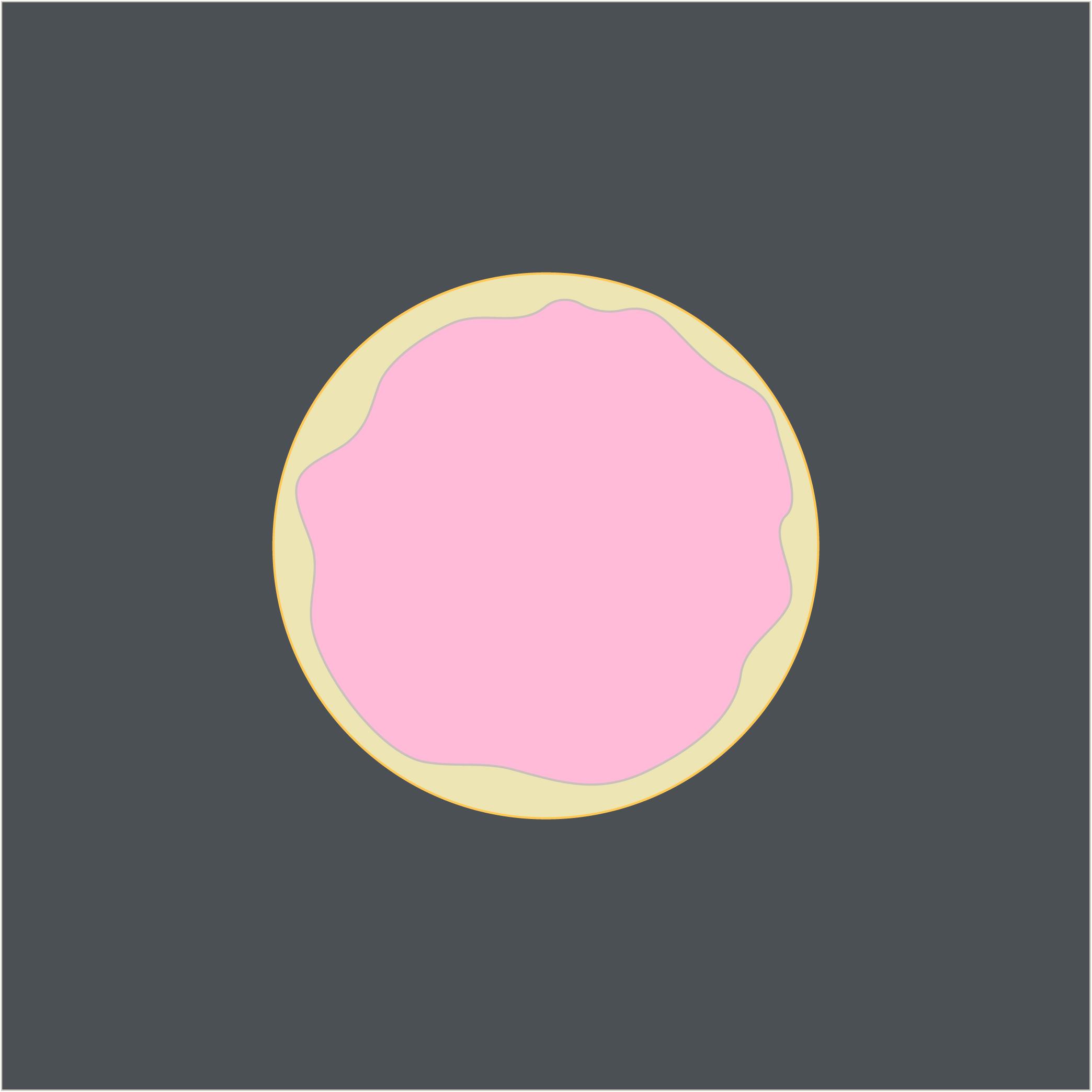 pink-cookie.jpg