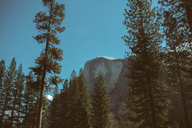 040116-Yosemite-36.jpg