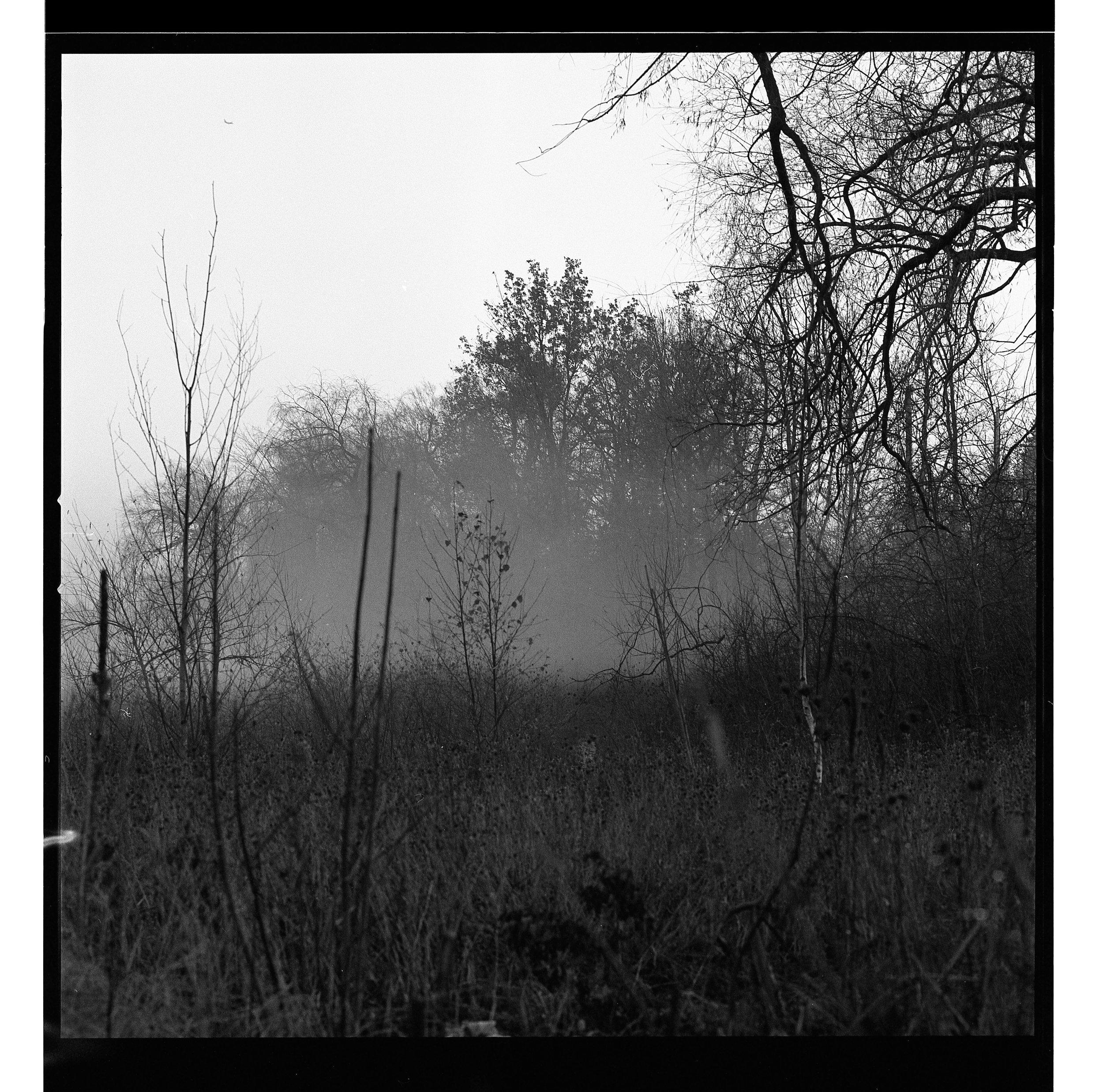 Film_edit-119.jpg