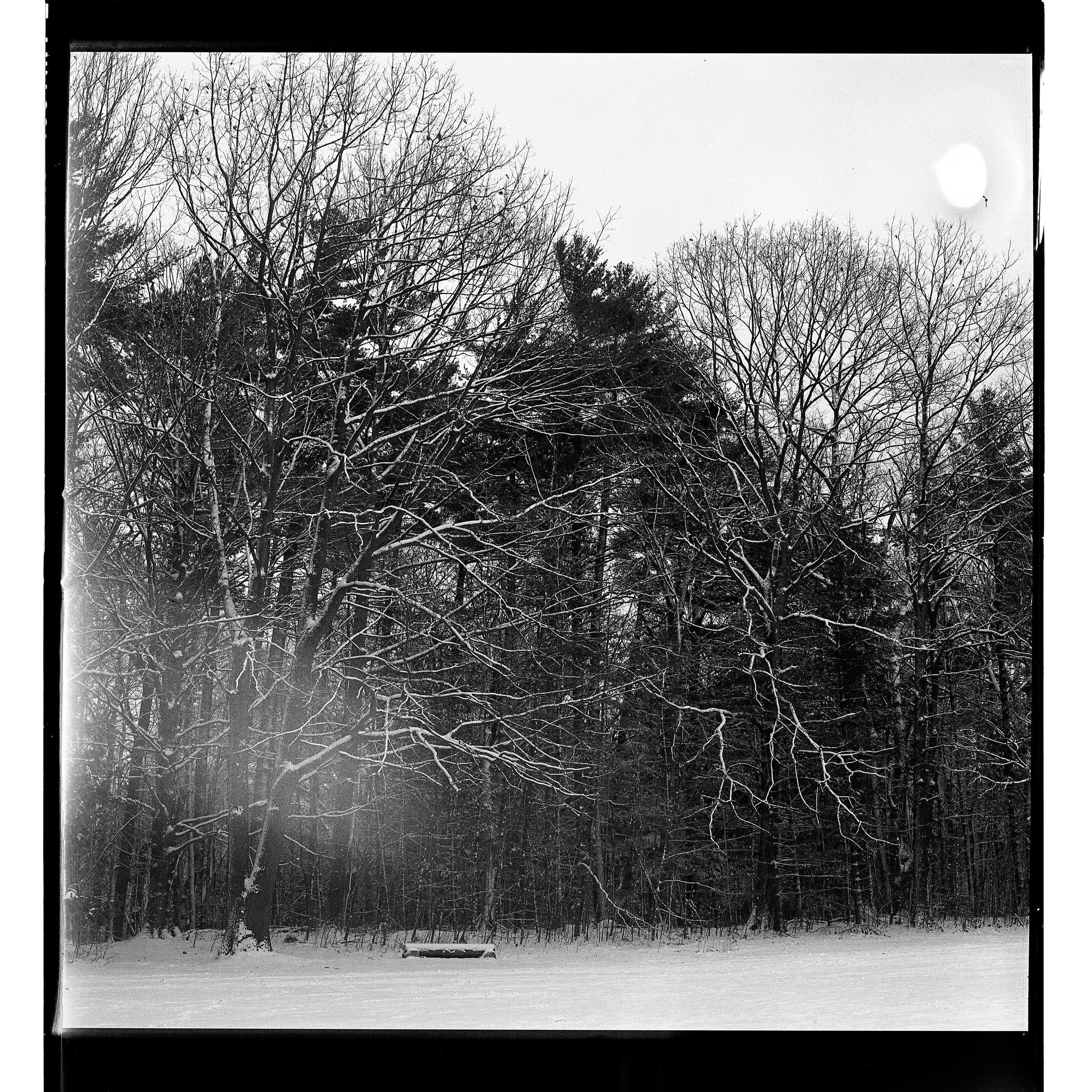 Film_edit-123.jpg