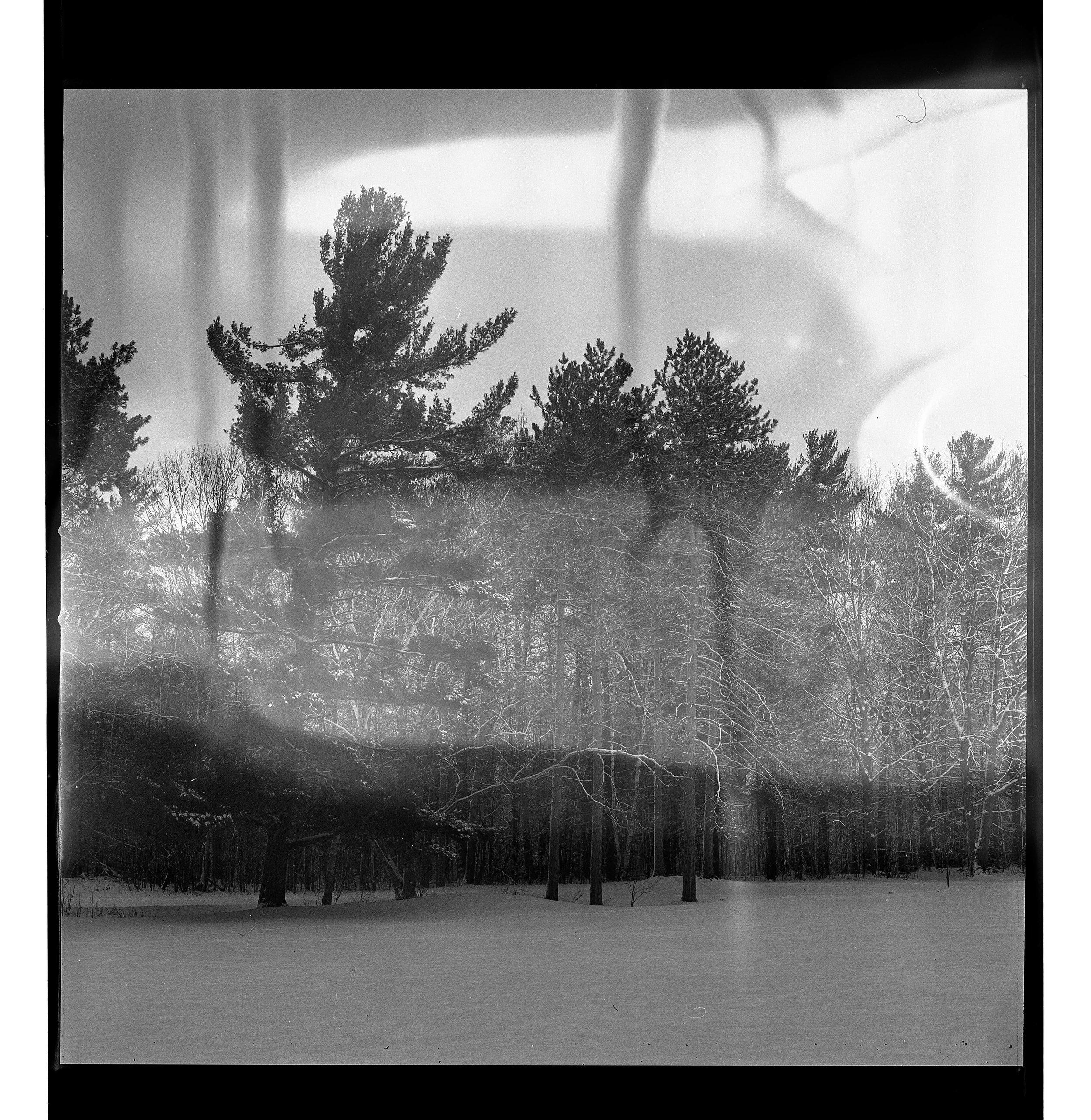 Film_edit-124.jpg