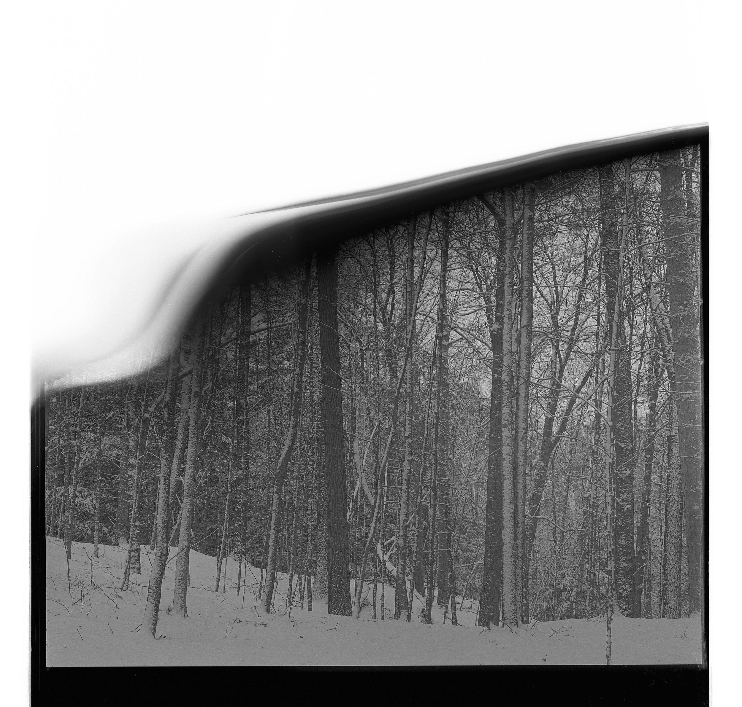 Film_edit-126.jpg