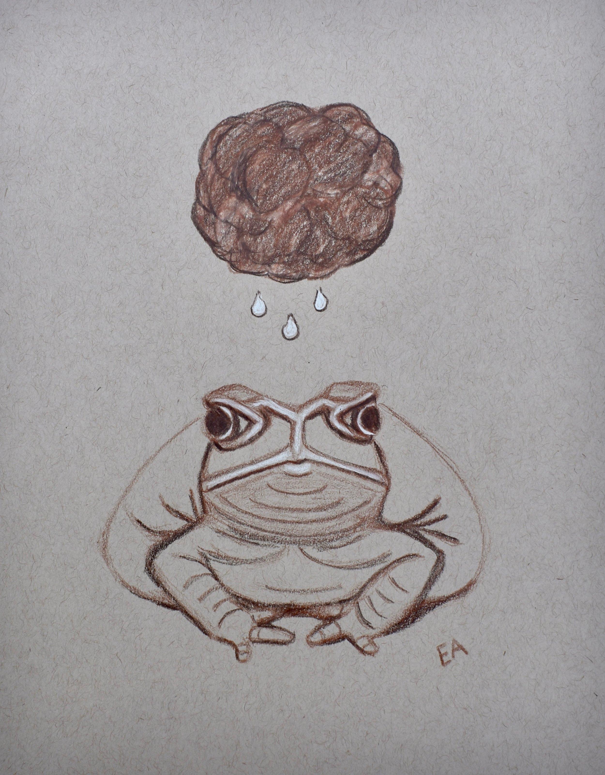 """Grumpy Toad"" 8x10 Prismacolor Pencil on toned paper."
