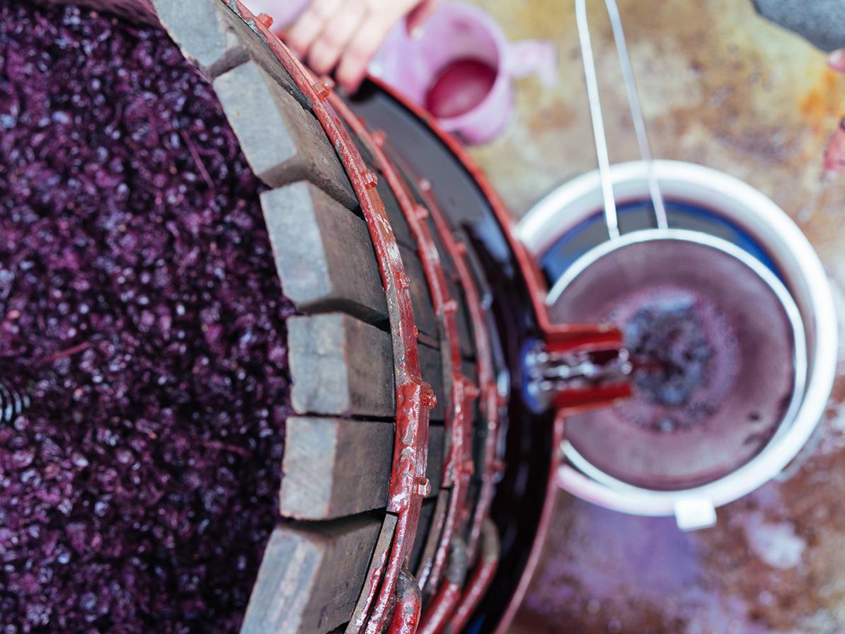 Margaret river hand crafted basket press wines Karridale Shiraz